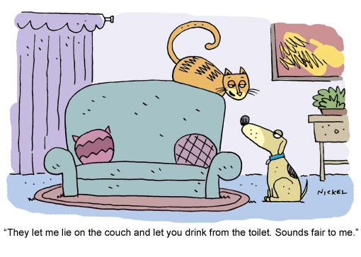 Friday-Funny-Cat-Cartoon-July1